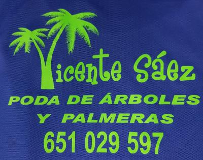 Poda de Palmeras, Vicente Sáez