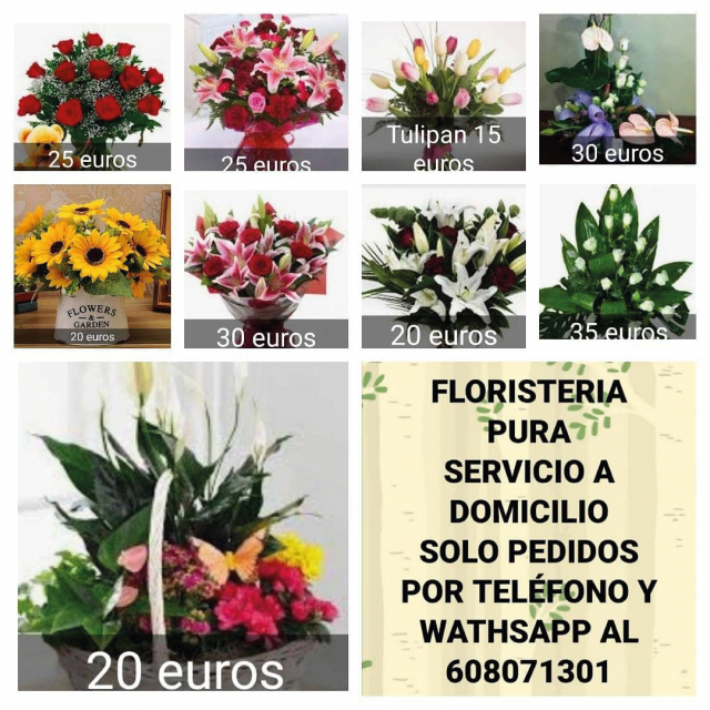 Regala Flores – Floristería Pura